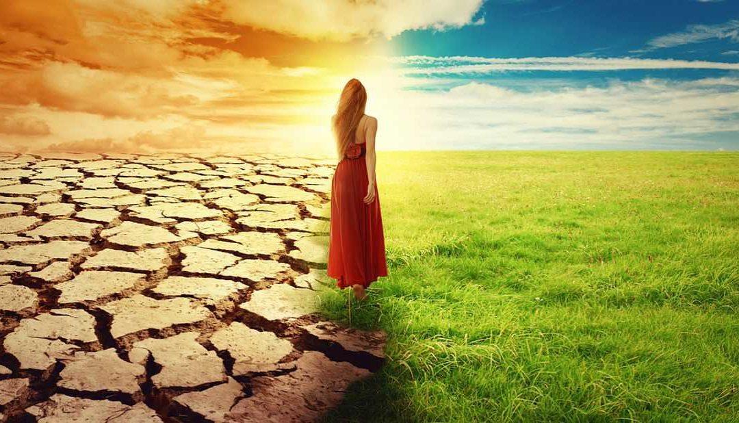 Jak změnit svůj život (krok za krokem)